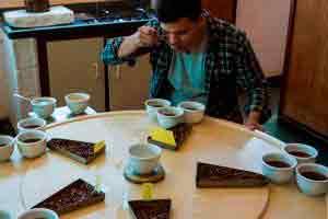 Curso online grátis de Degustador de Café Profissional