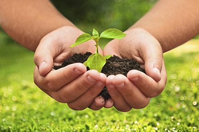 Curso online grátis de Agroecologia
