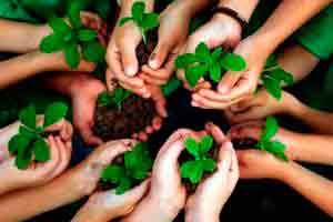 Curso online grátis de Educação Ambiental