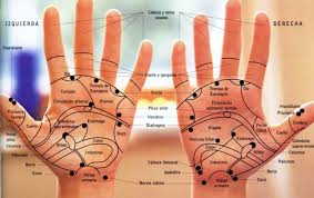 Curso online grátis de Reflexologia das Mãos