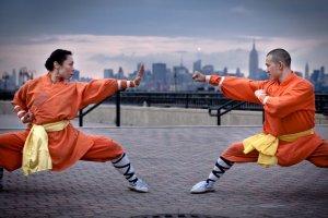 Curso online grátis de Teoria do Kung Fu