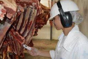 Curso online grátis de Inspeção Sanitária de Carnes