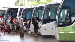 Curso online grátis de Transporte Coletivo de Passageiros
