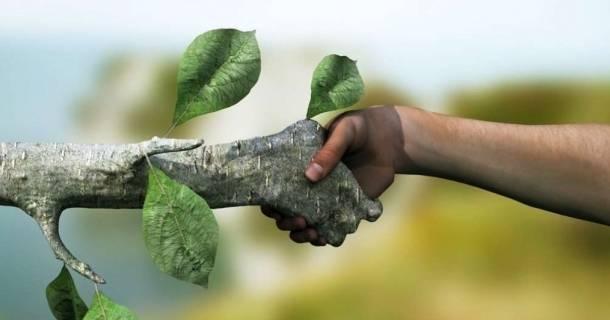 Curso online grátis de Meio Ambiente e Recursos Sustentáveis