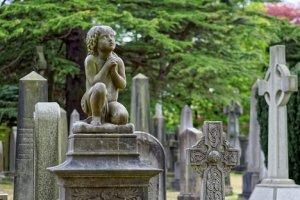 Curso online grátis de Administração de Cemitério