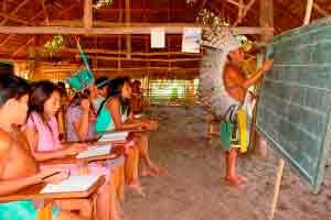 Curso online grátis de Educação Indígena