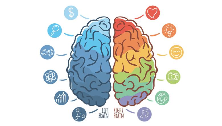 Curso online grátis de Neuropsicologia