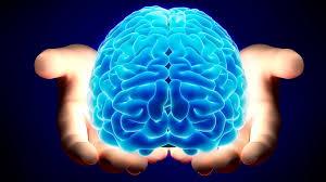 Curso online grátis de Aperfeiçoamento em Neuropsicanálise