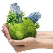 Curso online grátis de Empreendedorismo e Sustentabilidade Ambiental da Região