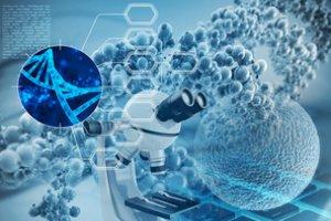 Curso online grátis de Fundamentos da Neurociência