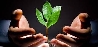 Curso online grátis de Introdução ao Estudo do Direito Ambiental