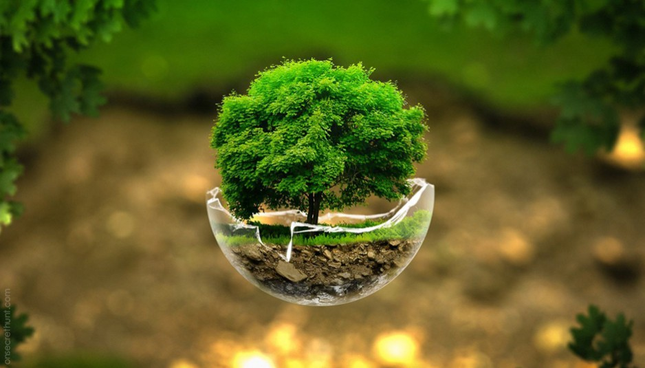 Curso online grátis de Gestão Ambiental