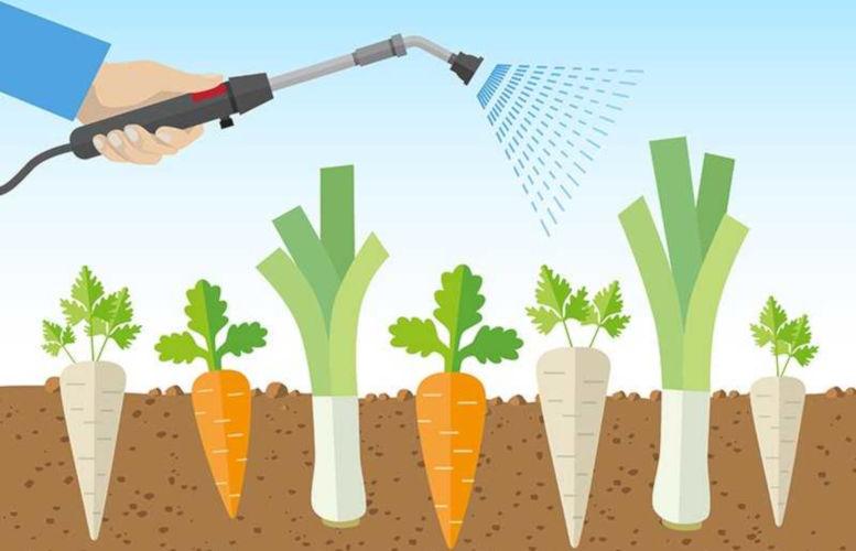 Curso online grátis de Básico sobre agrotóxicos