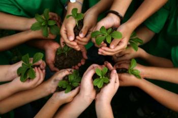 Curso online grátis de Educação do Meio Ambiente