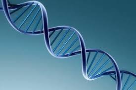 Curso online grátis de Introdução Proteômica e Genômica
