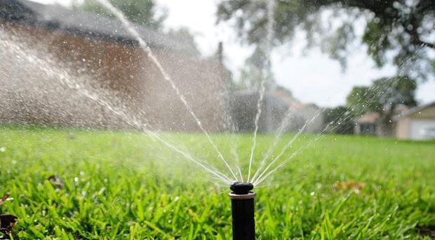 Curso online grátis de Introdução à Irrigação